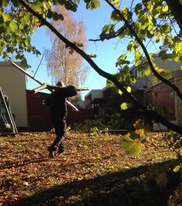 Ola Nordmann hauls logs at dugnad