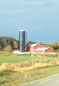 Farm, Vikna