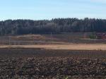 fields near Vestby, Østfold